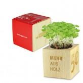 Pflanz-Holz Maxi