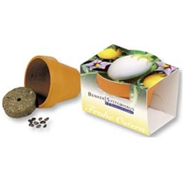 Frohe Ostern Eierbaum Töpfchen