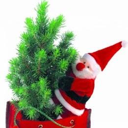 Weihnachtsbäumchen Filztasche