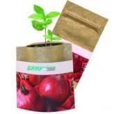 Naturtütchen Granatapfel